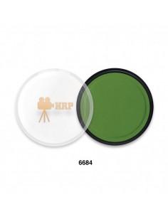 AGUA COLOR HRP 6684 VERDE MUSGO